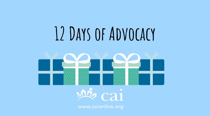 12 Days of Advocacy