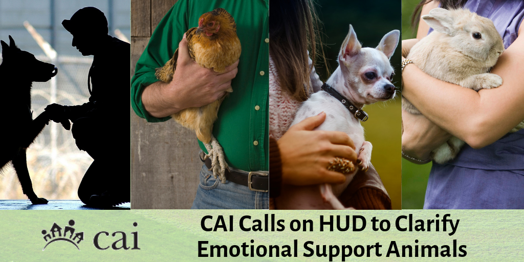 CAI Calls on HUD to Clarify Emotional Support Animals