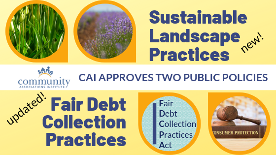 CAI Adopts Policies on Sustainable Landscape Practices and Fair Debt Collections