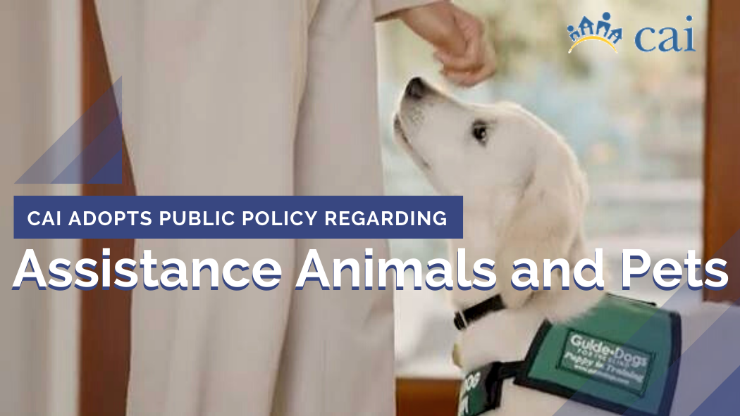 CAI Board of Trustees Adopts Public Policy on Assistance Animals