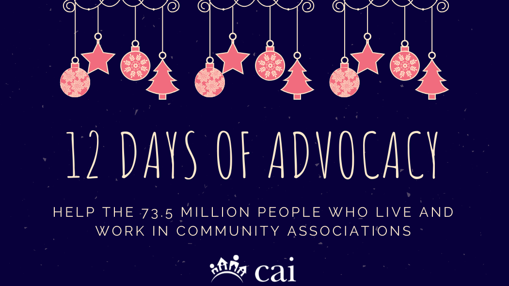 CAI Kicks off 12 Days of Advocacy