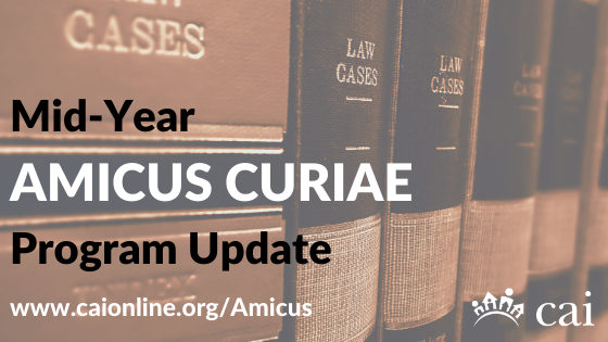 Mid-Year CAI Amicus Curiae Program Update