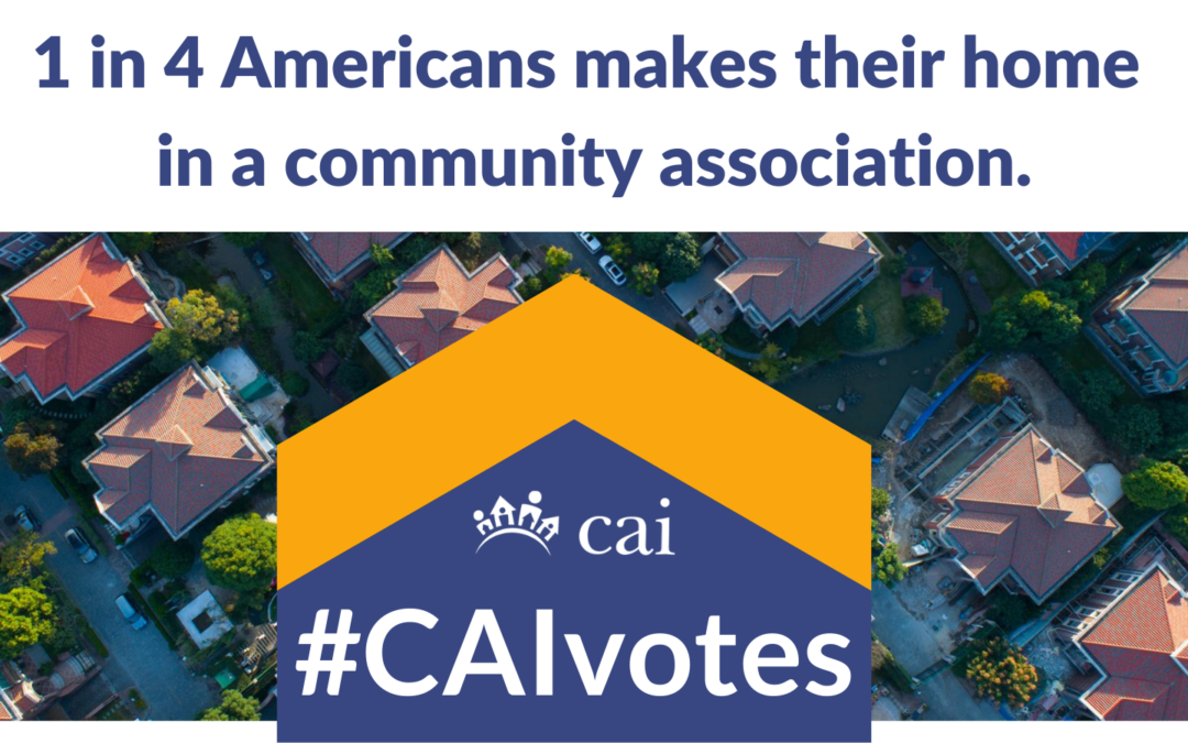 Join #CAIvotes!