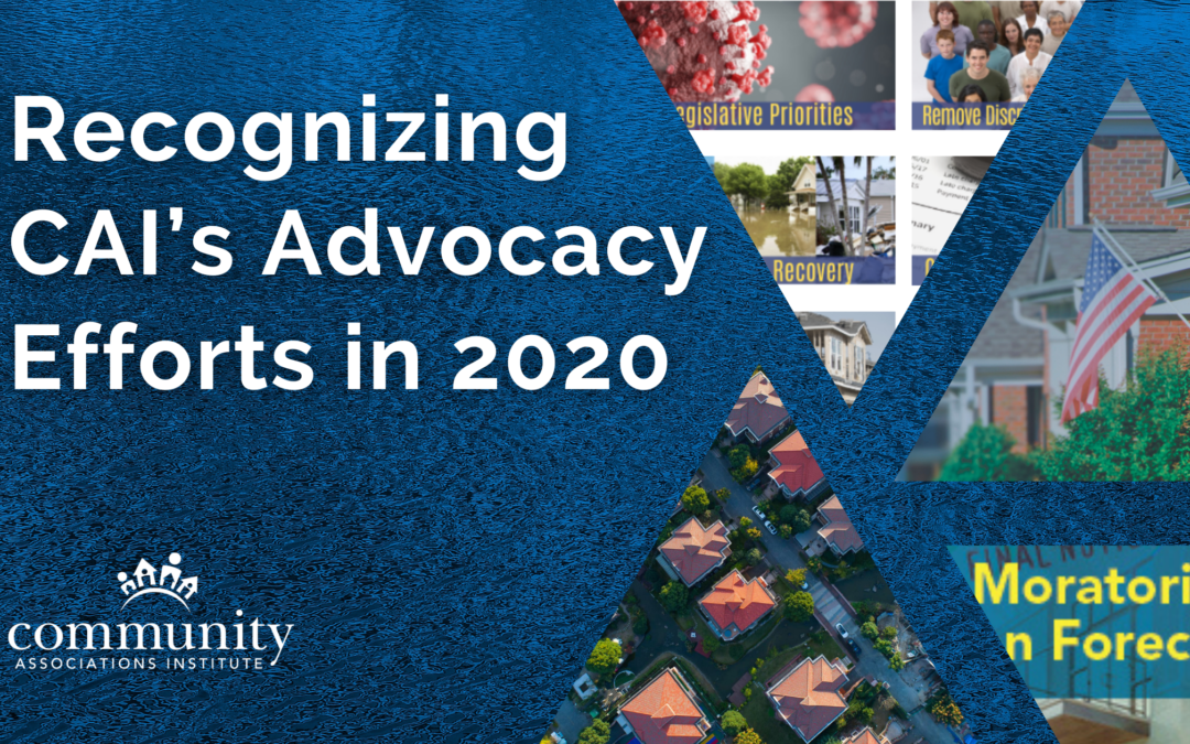 Recognizing CAI's Advocacy Efforts in 2020