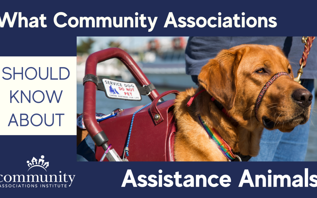 What Community Associations Should Know About Assistance Animals